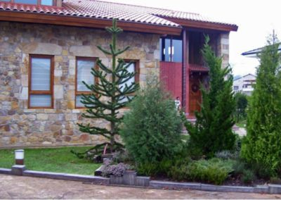 jardin coniferas