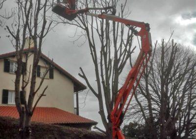 poda altura cesta telescopica